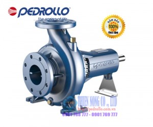 ĐẦU BƠM LY TÂM RỜI TRỤC PEDROLLO FG2-100/250A