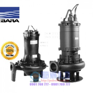 Máy bơm chìm nước thải Ebara 100 DL 5 11