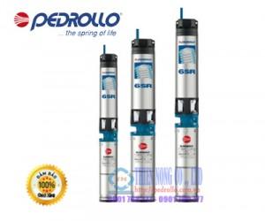 Máy bơm nước hỏa tiễn 6 inch PEDROLLO 6SR44/13-PD 25HP